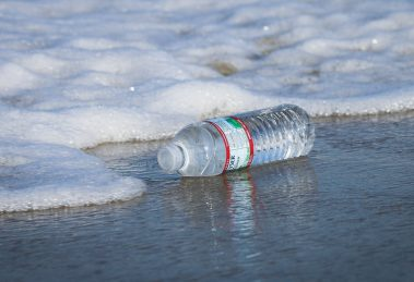 China invents eco-friendly plastic